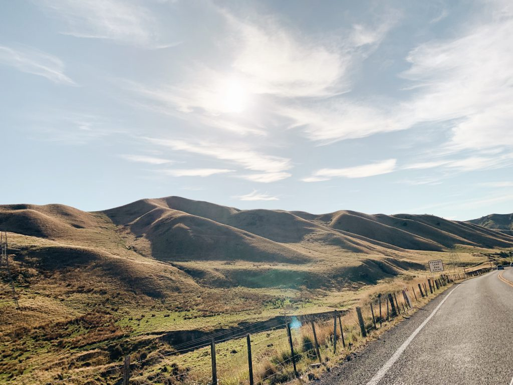 Finding a job in New Zealand