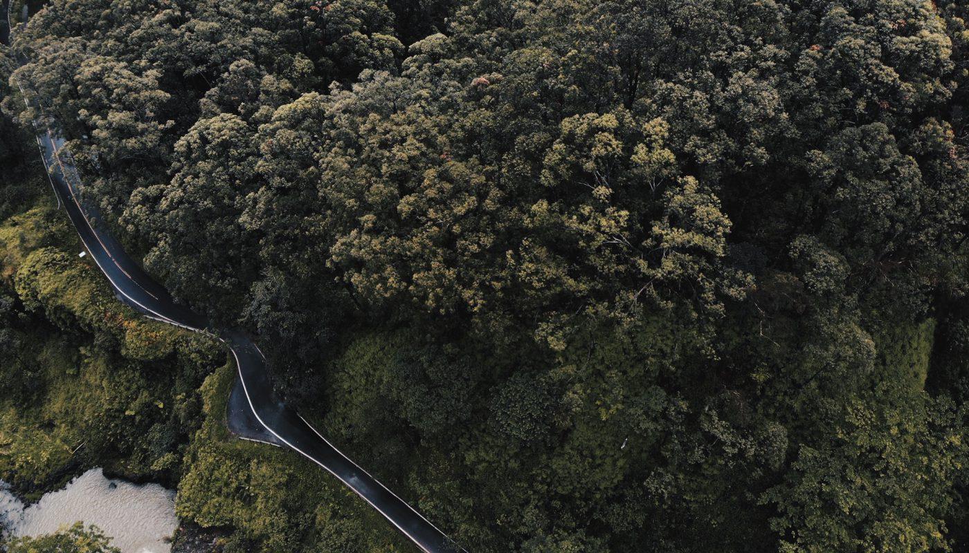 Best stops Road to Hana